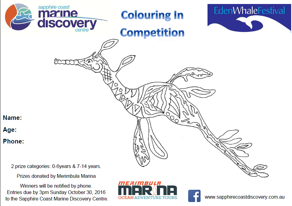 colouring in comp