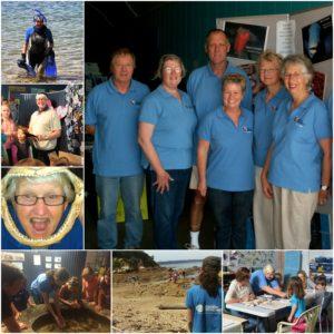 volunteer collage