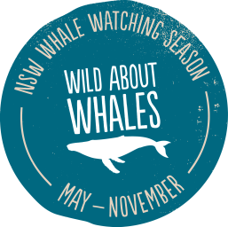 wild about whales logo